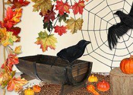 hojas en otoño para tu escaparate