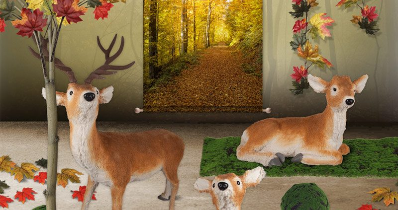 decoración-escaparates-otoño