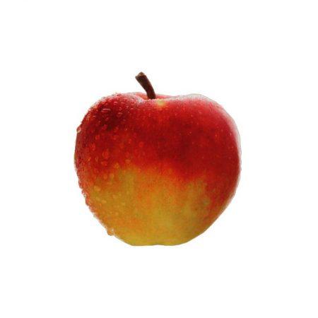 DECORACIÓN IMPRESA MANZANA ROJA Ø18CM, réplica de comida, alimentos ficticios, réplica de alimentos, imitación alimentos, fake food, comida de imitación, sampuru